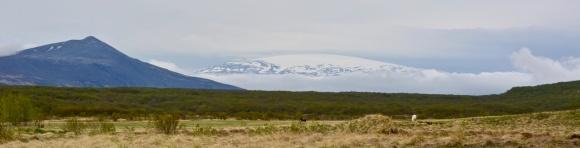Strútur og Eiríksjökull